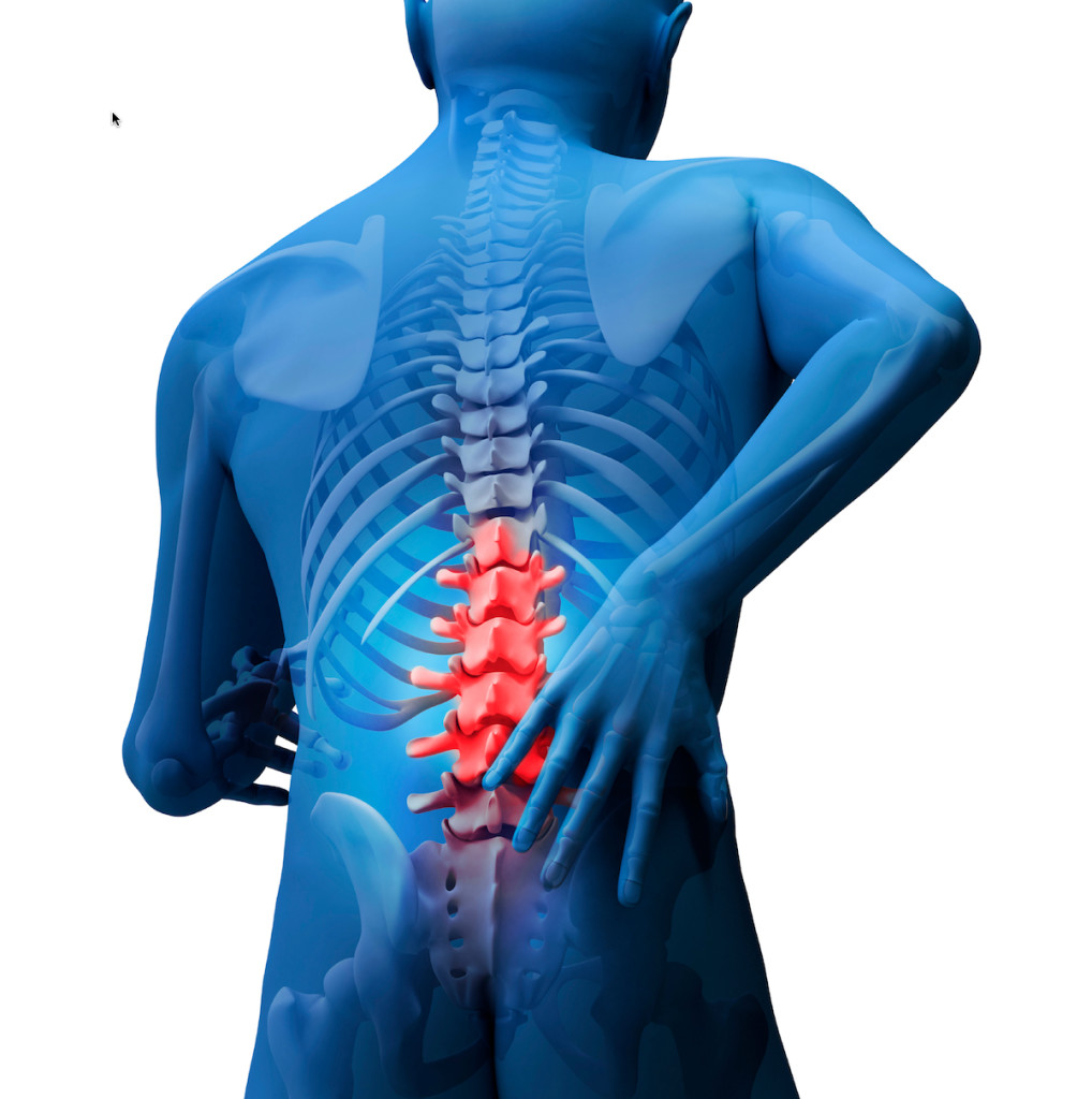 Pain 101: Low Back Pain - Coury & Buehler Physical Therapy